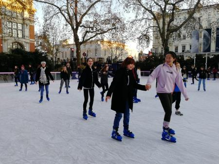 Ice Skating at National History Museum